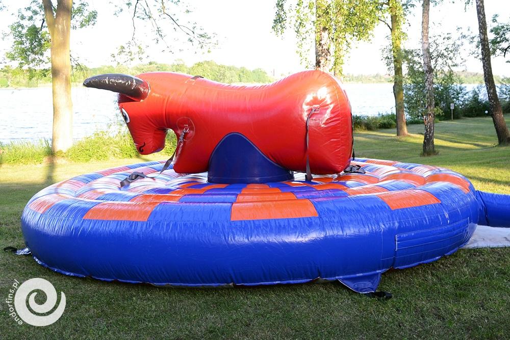 byk rodeo na imprezy integracyjne - łódź i poznań